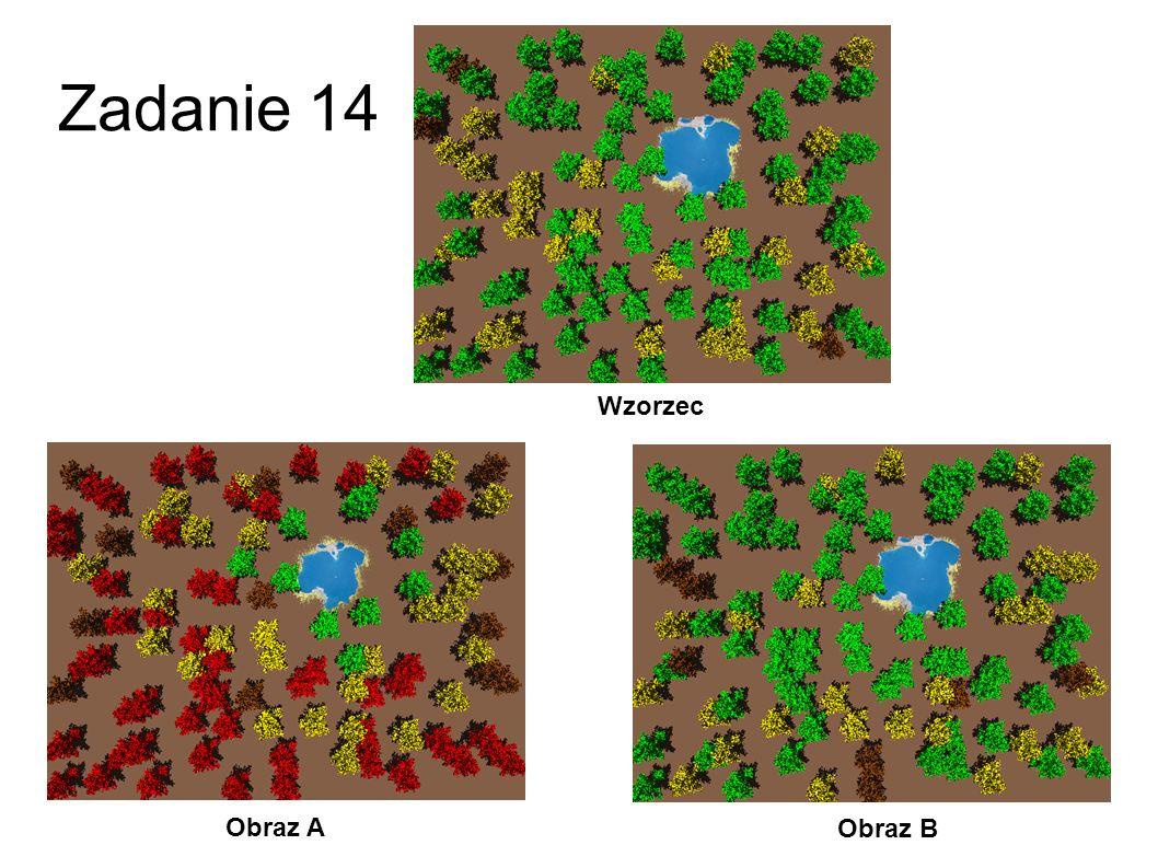 Zadanie 13 Obraz A Obraz B Wzorzec