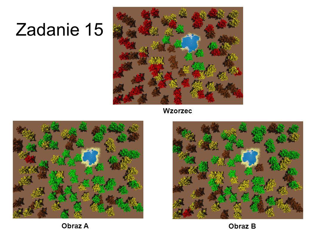 Zadanie 14 Obraz A Obraz B Wzorzec