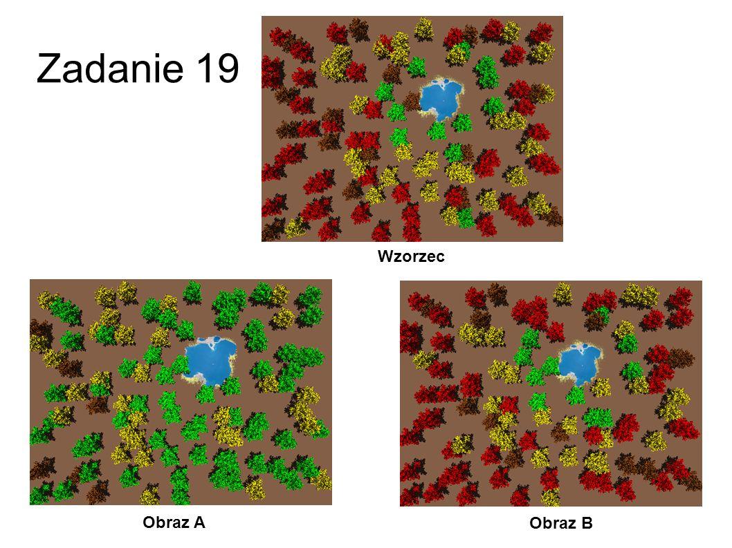 Zadanie 18 Obraz A Obraz B Wzorzec