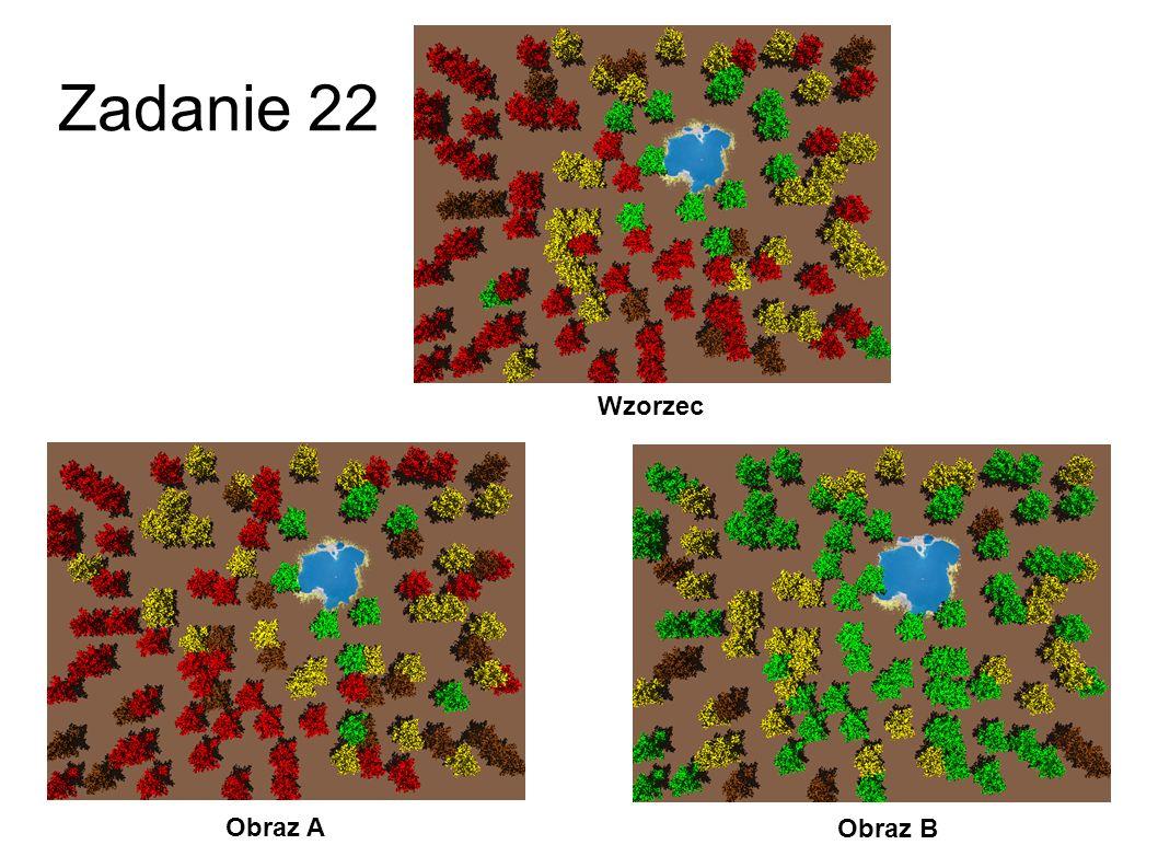 Zadanie 21 Obraz A Obraz B Wzorzec
