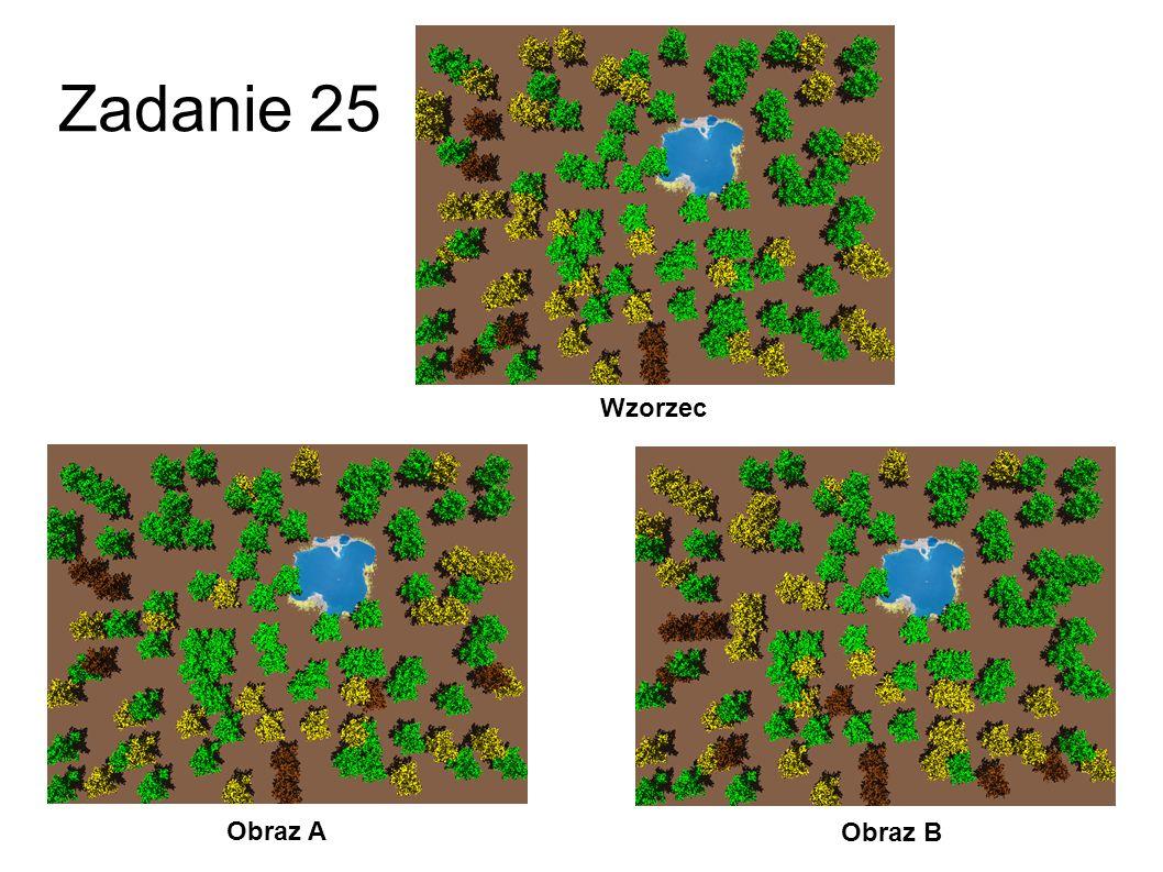 Zadanie 24 Obraz A Obraz B Wzorzec