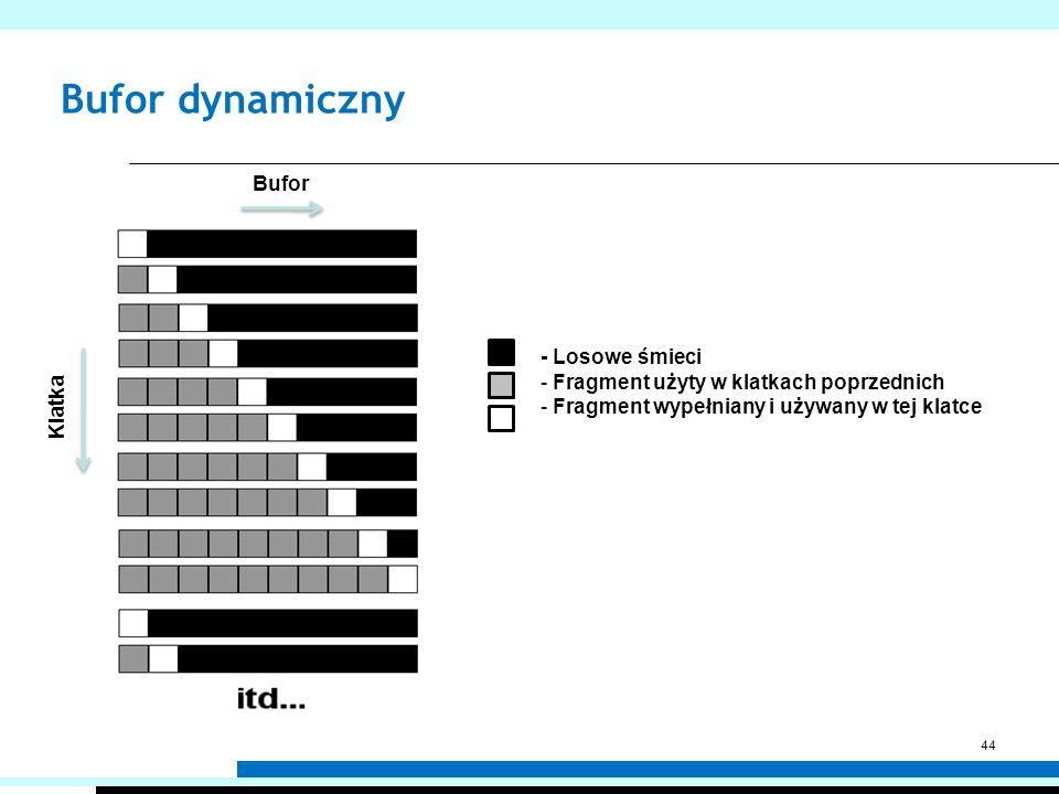 Bufor dynamiczny 44 - Losowe śmieci - Fragment użyty w klatkach poprzednich - Fragment wypełniany i używany w tej klatce Bufor Klatka