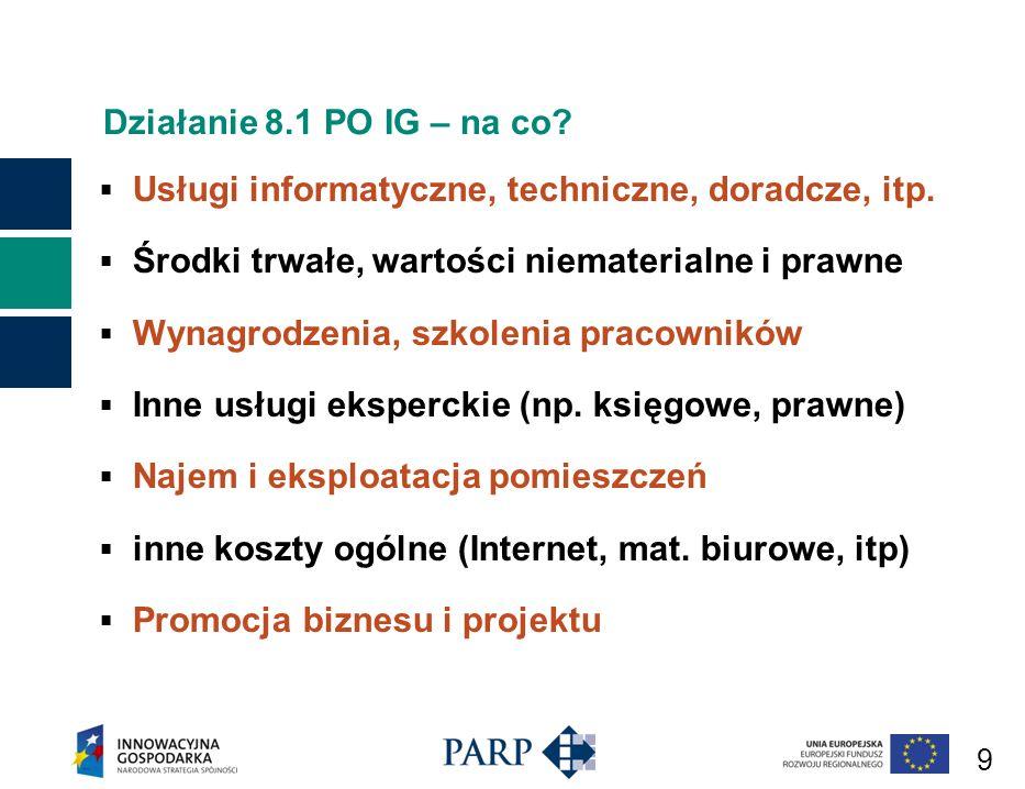 9 Działanie 8.1 PO IG – na co.Usługi informatyczne, techniczne, doradcze, itp.