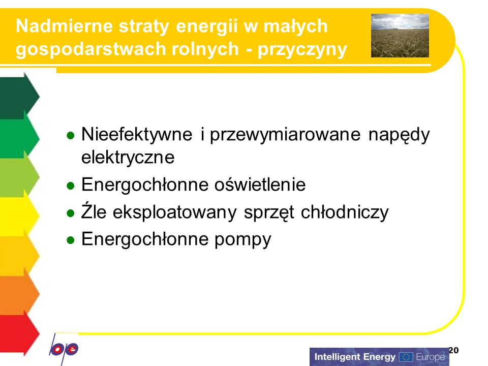 20 Nadmierne straty energii w małych gospodarstwach rolnych - przyczyny Nieefektywne i przewymiarowane napędy elektryczne Energochłonne oświetlenie Źl