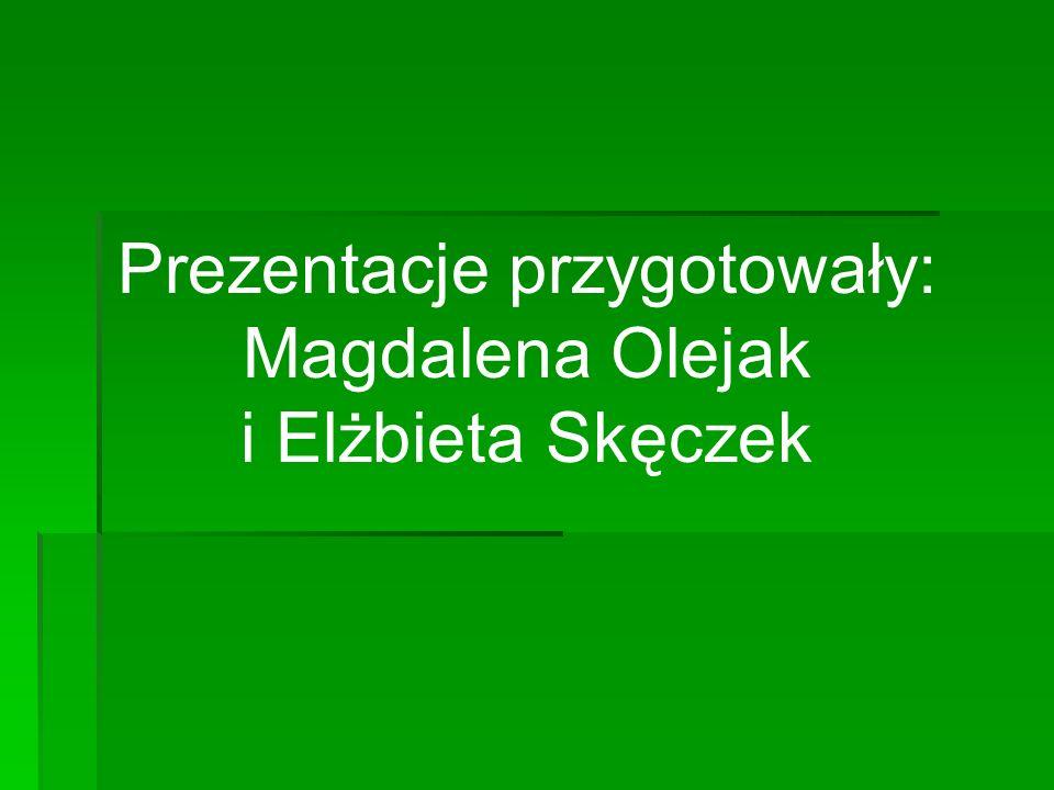 Prezentacje przygotowały: Magdalena Olejak i Elżbieta Skęczek