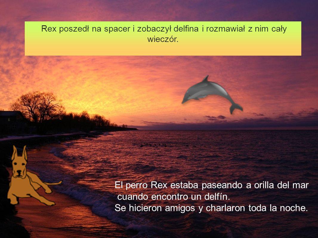 Rex poszedł na spacer i zobaczył delfina i rozmawiał z nim cały wieczór. El perro Rex estaba paseando a orilla del mar cuando encontro un delfín. Se h
