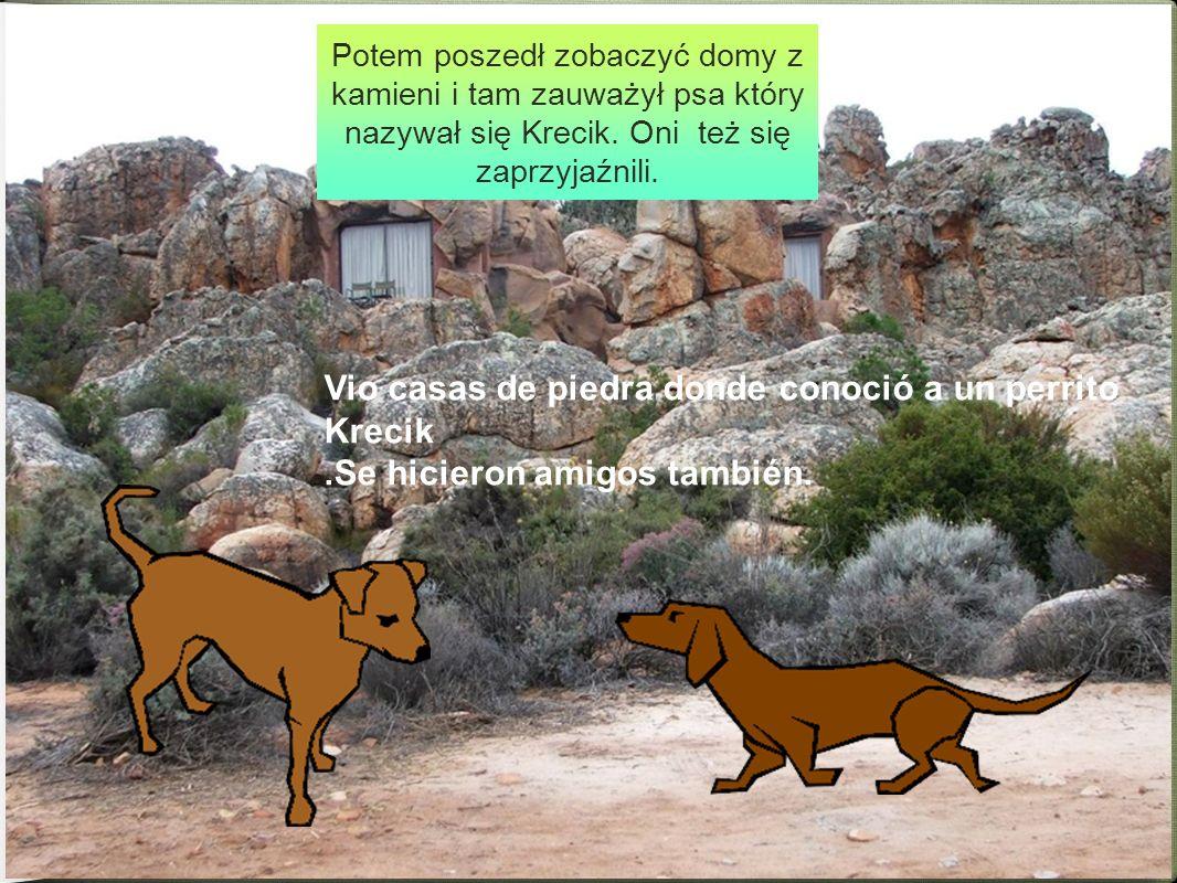 Potem poszedł zobaczyć domy z kamieni i tam zauważył psa który nazywał się Krecik. Oni też się zaprzyjaźnili. Vio casas de piedra donde conoció a un p