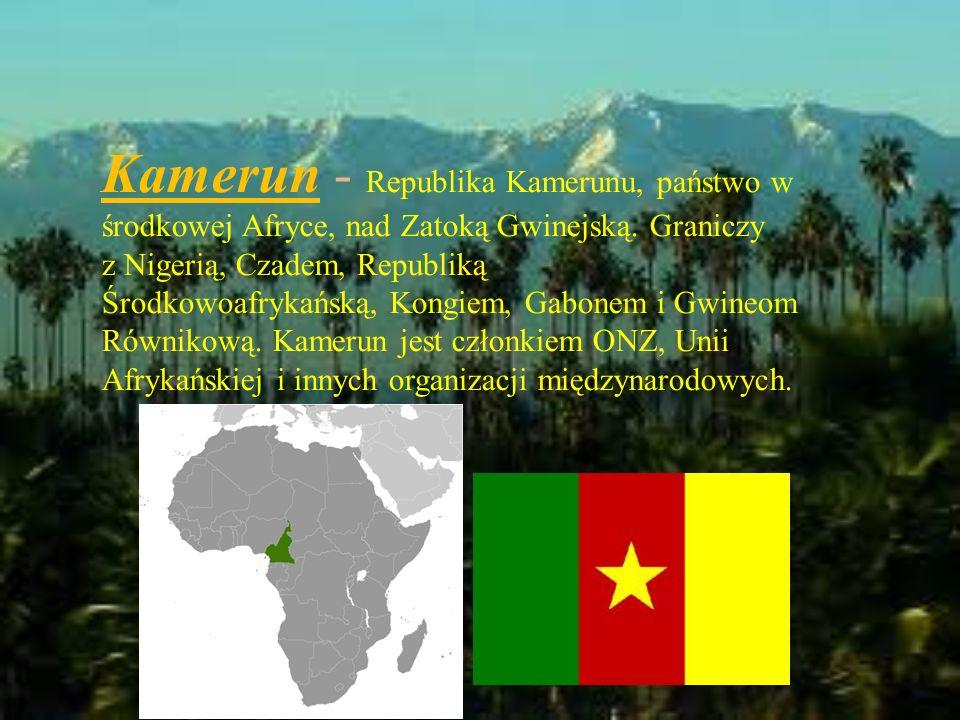 Kamerun - Republika Kamerunu, państwo w środkowej Afryce, nad Zatoką Gwinejską. Graniczy z Nigerią, Czadem, Republiką Środkowoafrykańską, Kongiem, Gab