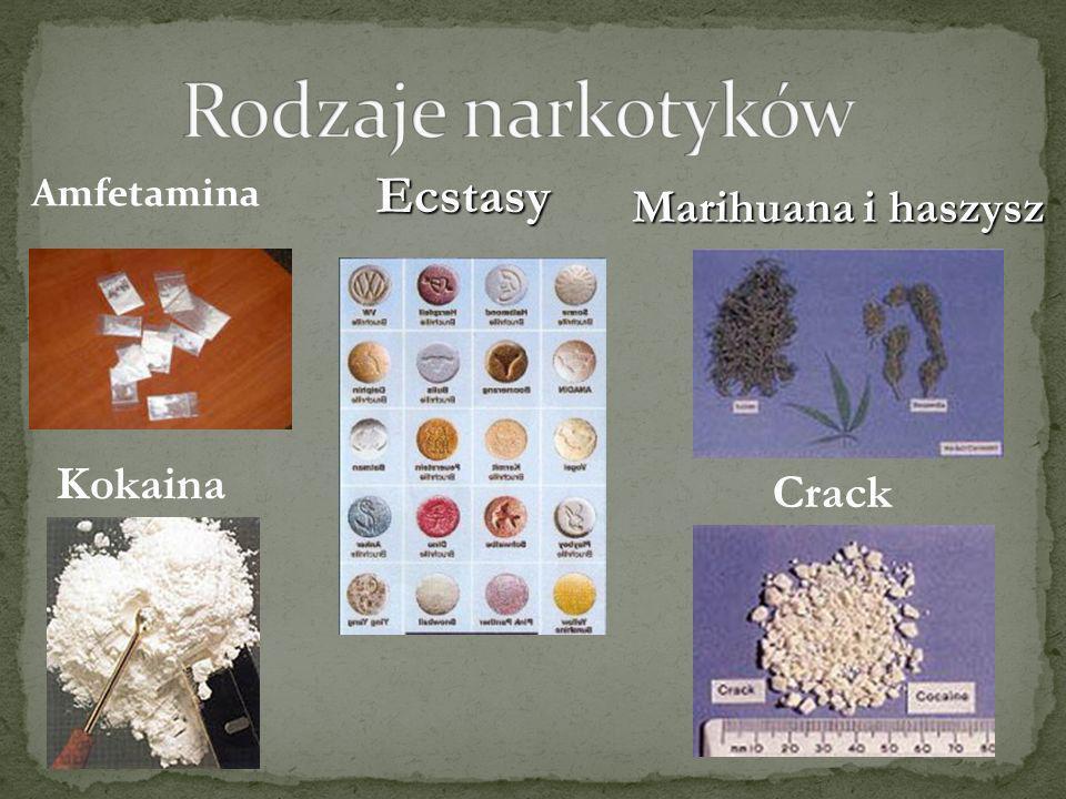 Heroina Morfina Opium Grzyby halucynogenne Grzyby halucynogenne Rozpuszczalniki i inne środki wziewne Rozpuszczalniki i inne środki wziewne Barbituriany Barbituriany