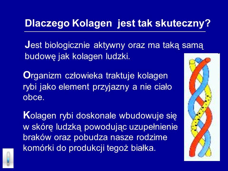 Dlaczego Kolagen jest tak skuteczny? J est biologicznie aktywny oraz ma taką samą budowę jak kolagen ludzki. O rganizm człowieka traktuje kolagen rybi