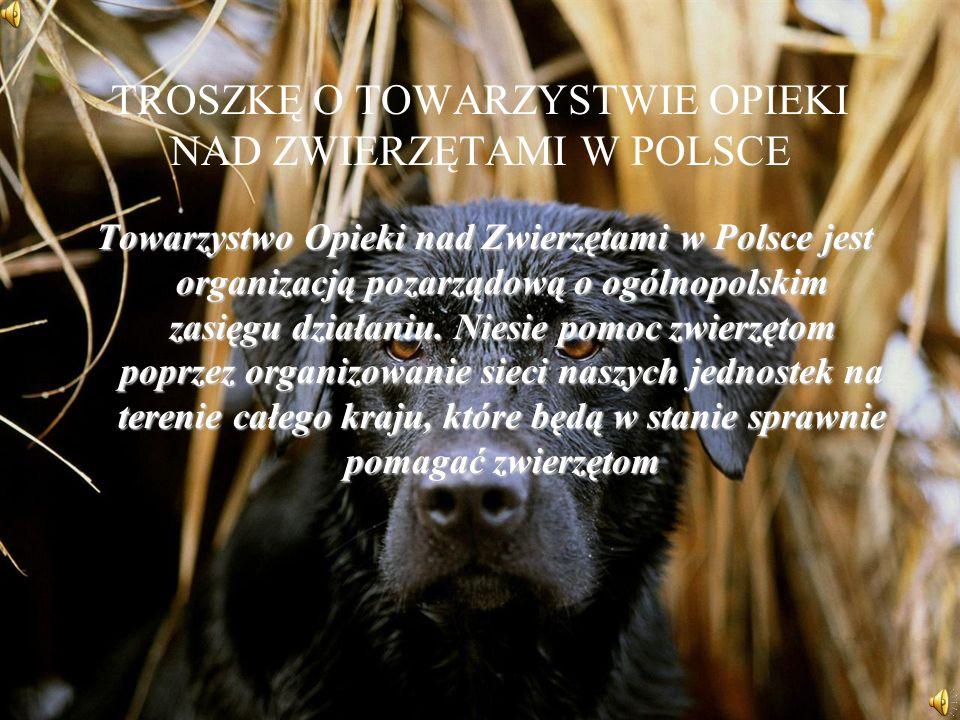 TROSZKĘ O TOWARZYSTWIE OPIEKI NAD ZWIERZĘTAMI W POLSCE Towarzystwo Opieki nad Zwierzętami w Polsce jest organizacją pozarządową o ogólnopolskim zasięgu działaniu.