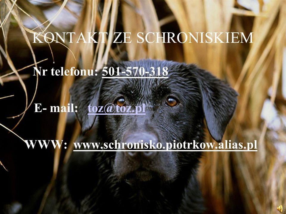 KONTAKT ZE SCHRONISKIEM Nr telefonu: 501-570-318 E- mail: toz@toz.pltoz@toz.pl WWW: www.schronisko.piotrkow.alias.pl