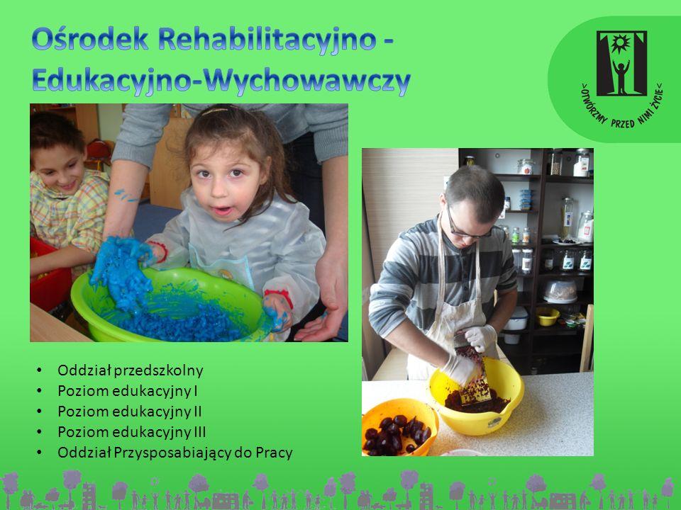 Oddział przedszkolny Poziom edukacyjny I Poziom edukacyjny II Poziom edukacyjny III Oddział Przysposabiający do Pracy