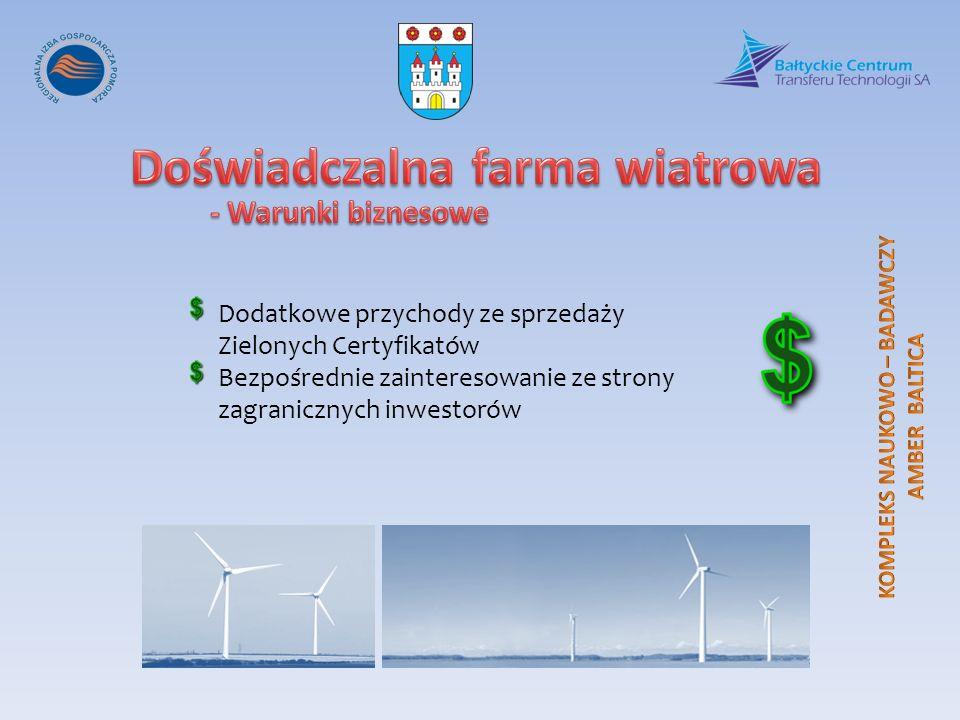 Dodatkowe przychody ze sprzedaży Zielonych Certyfikatów Bezpośrednie zainteresowanie ze strony zagranicznych inwestorów