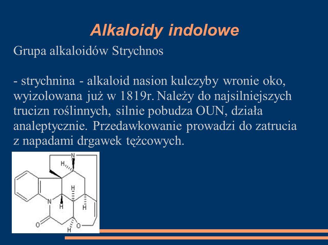 Alkaloidy indolowe Grupa alkaloidów Strychnos - strychnina - alkaloid nasion kulczyby wronie oko, wyizolowana już w 1819r. Należy do najsilniejszych t