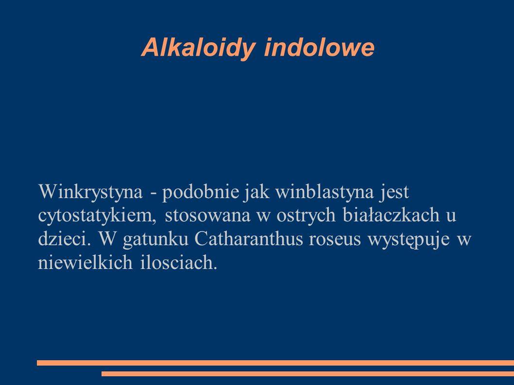 Alkaloidy indolowe Winkrystyna - podobnie jak winblastyna jest cytostatykiem, stosowana w ostrych białaczkach u dzieci. W gatunku Catharanthus roseus