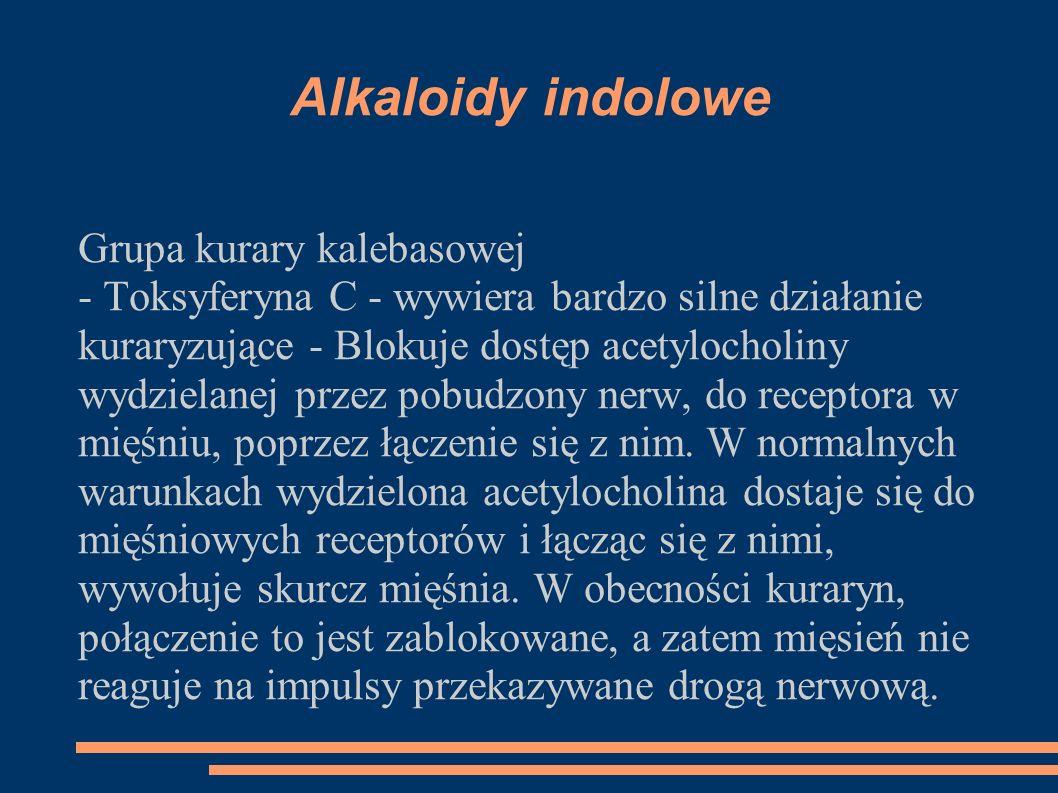 Alkaloidy indolowe Grupa kurary kalebasowej - Toksyferyna C - wywiera bardzo silne działanie kuraryzujące - Blokuje dostęp acetylocholiny wydzielanej