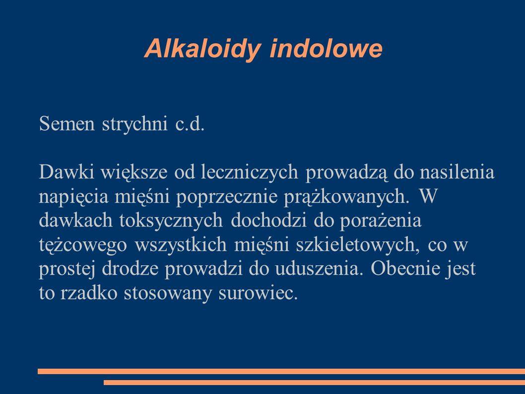 Alkaloidy indolowe Semen strychni c.d. Dawki większe od leczniczych prowadzą do nasilenia napięcia mięśni poprzecznie prążkowanych. W dawkach toksyczn