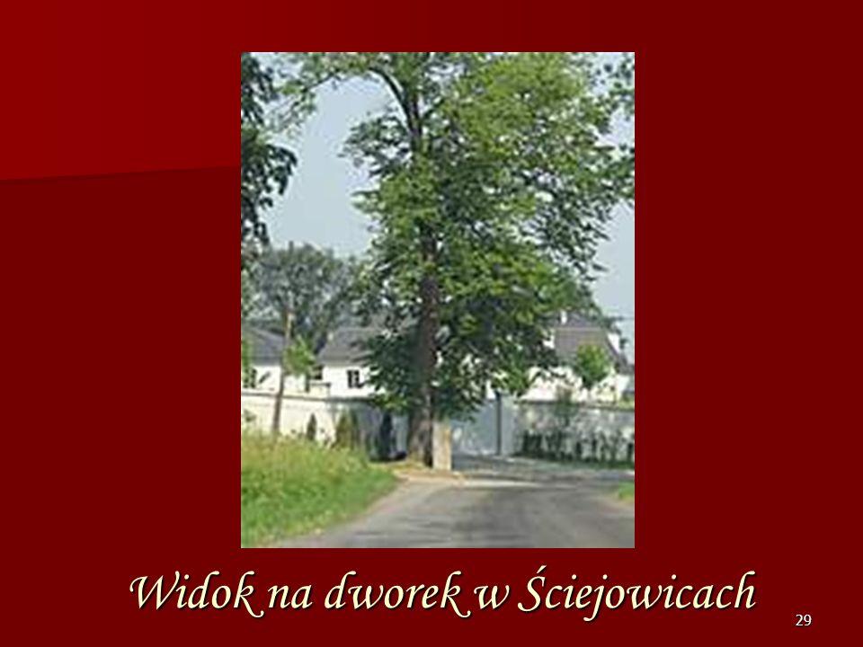 28 Dwór w Ściejowicach Dwór klasycystyczny z pierwszej połowy XIX w. Pięknie odnowiony i wytynkowany. Otoczony jest niestety wysokim murem. Wokół dwor