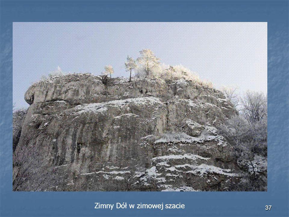 36 Legenda o Zimnym Dole W miejscu gdzie dziś znajduje się rezerwat Zimny Dół stała karczma, w której odbywała się wesele. Podpici, rozbawieni weselni