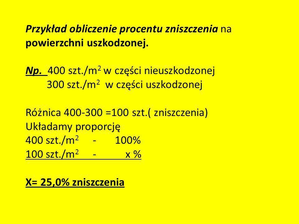 Przykład obliczenie procentu zniszczenia na powierzchni uszkodzonej. Np. 400 szt./m 2 w części nieuszkodzonej 300 szt./m 2 w części uszkodzonej Różnic