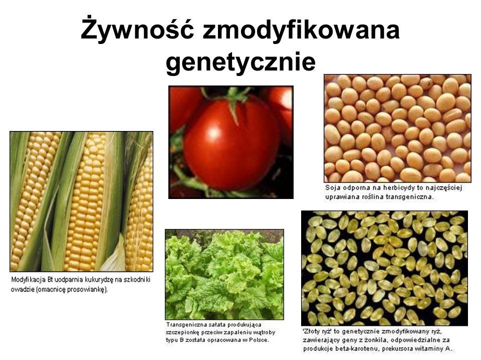 Żywność zmodyfikowana genetycznie