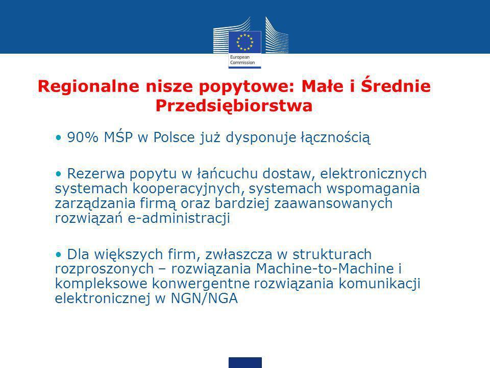 Regionalne nisze popytowe: Małe i Średnie Przedsiębiorstwa 90% MŚP w Polsce już dysponuje łącznością Rezerwa popytu w łańcuchu dostaw, elektronicznych