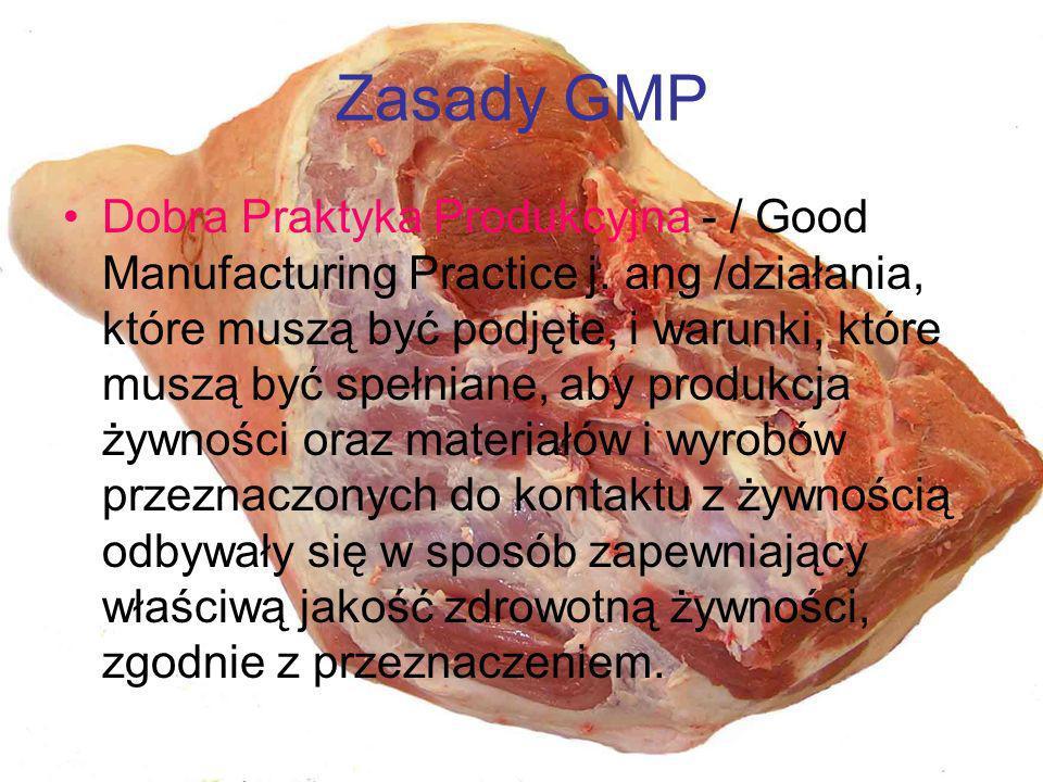 Zasady GMP Dobra Praktyka Produkcyjna - / Good Manufacturing Practice j. ang /działania, które muszą być podjęte, i warunki, które muszą być spełniane