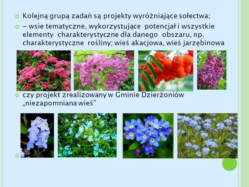 Kolejną grupą zadań są projekty wyróżniające sołectwa; - wsie tematyczne, wykorzystujące potencjał i wszystkie elementy charakterystyczne dla danego o