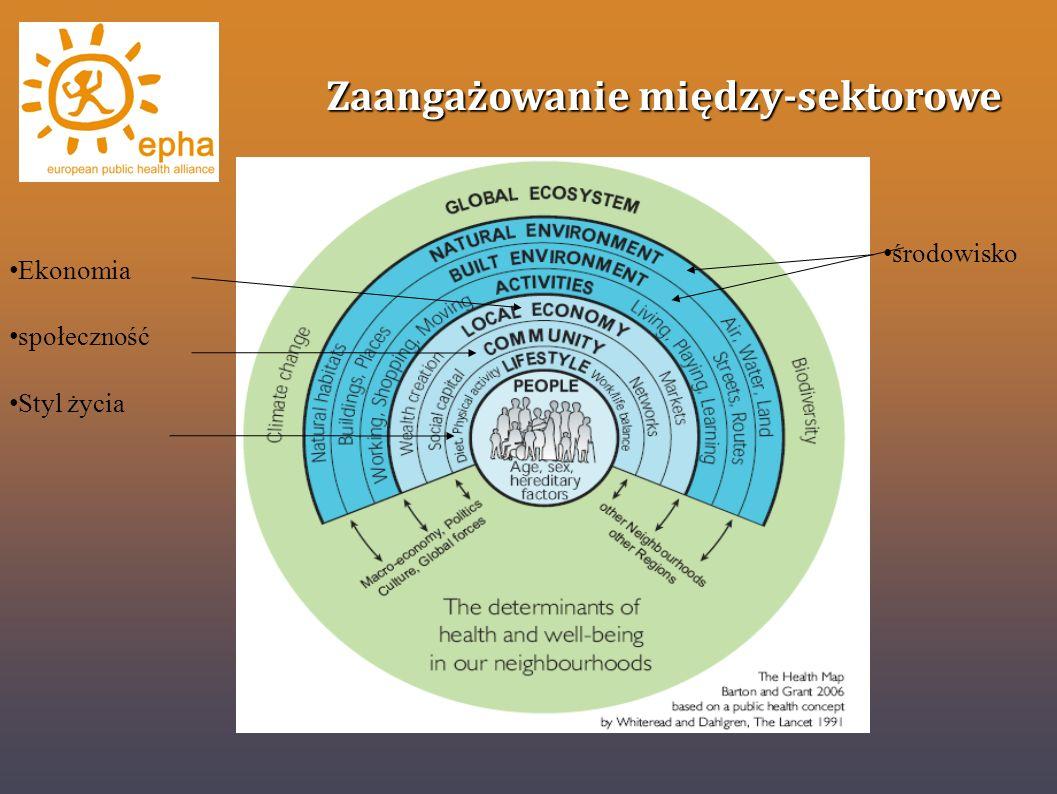 Zaangażowanie między-sektorowe Ekonomia społeczność Styl życia środowisko