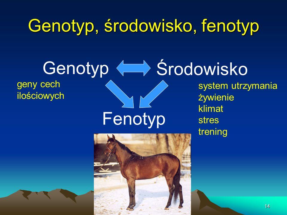 14 Genotyp, środowisko, fenotyp Genotyp Środowisko Fenotyp geny cech ilościowych system utrzymania żywienie klimat stres trening