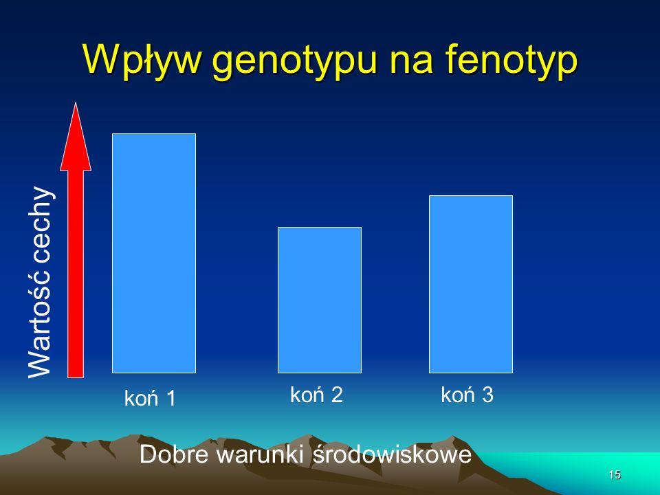 15 Wpływ genotypu na fenotyp Dobre warunki środowiskowe Wartość cechy koń 1 koń 3koń 2