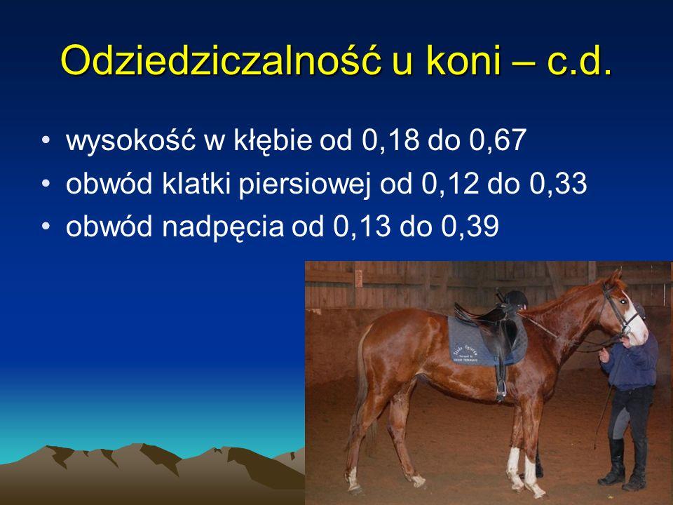 25 wysokość w kłębie od 0,18 do 0,67 obwód klatki piersiowej od 0,12 do 0,33 obwód nadpęcia od 0,13 do 0,39 Odziedziczalność u koni – c.d.