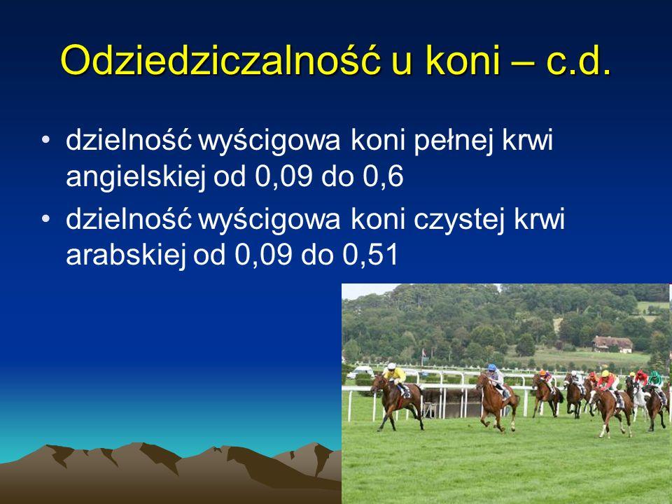 27 dzielność wyścigowa koni pełnej krwi angielskiej od 0,09 do 0,6 dzielność wyścigowa koni czystej krwi arabskiej od 0,09 do 0,51 Odziedziczalność u