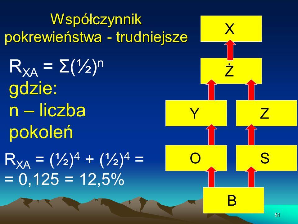 51 Współczynnik pokrewieństwa - trudniejsze R XA = Σ(½) n gdzie: n – liczba pokoleń BSZŻ X YO R XA = (½) 4 + (½) 4 = = 0,125 = 12,5%