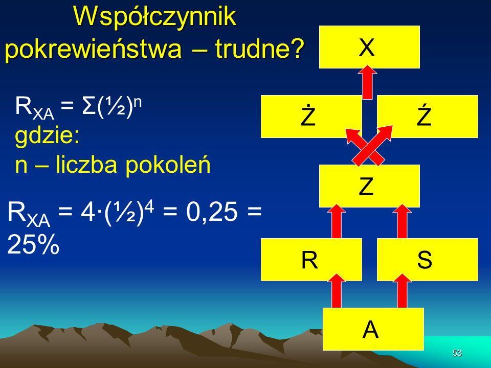 53 Współczynnik pokrewieństwa – trudne? R XA = Σ(½) n gdzie: n – liczba pokoleń AS Ź Ż X ZR R XA = 4·(½) 4 = 0,25 = 25%