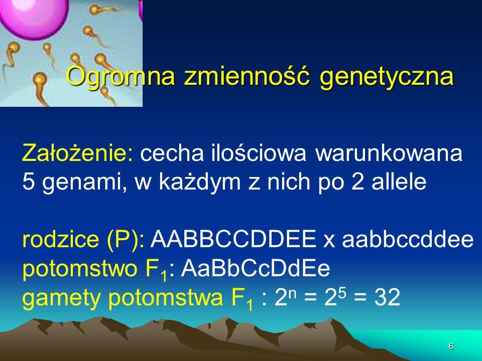 6 Ogromna zmienność genetyczna Założenie: cecha ilościowa warunkowana 5 genami, w każdym z nich po 2 allele rodzice (P): AABBCCDDEE x aabbccddee potom