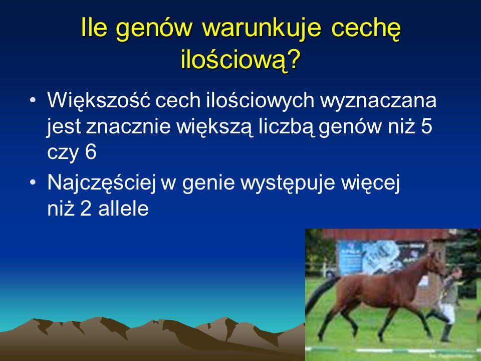 9 Cechy ilościowe - transgresja założenie: prędkość podstawowa konia wynosi 20 km/godz., a każdy duży allel zwiększa jego prędkość o 5 km/godz.