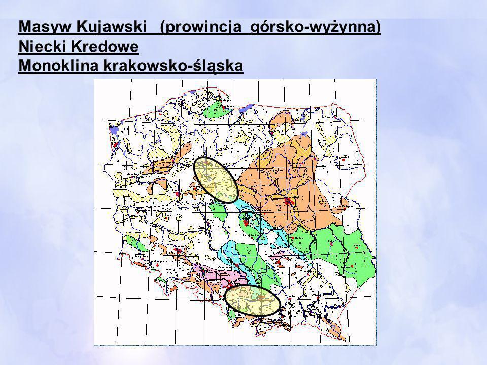 Masyw Kujawski (prowincja górsko-wyżynna) Niecki Kredowe Monoklina krakowsko-śląska