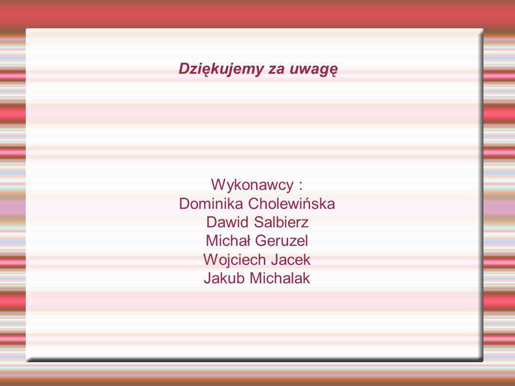 Dziękujemy za uwagę Wykonawcy : Dominika Cholewińska Dawid Salbierz Michał Geruzel Wojciech Jacek Jakub Michalak