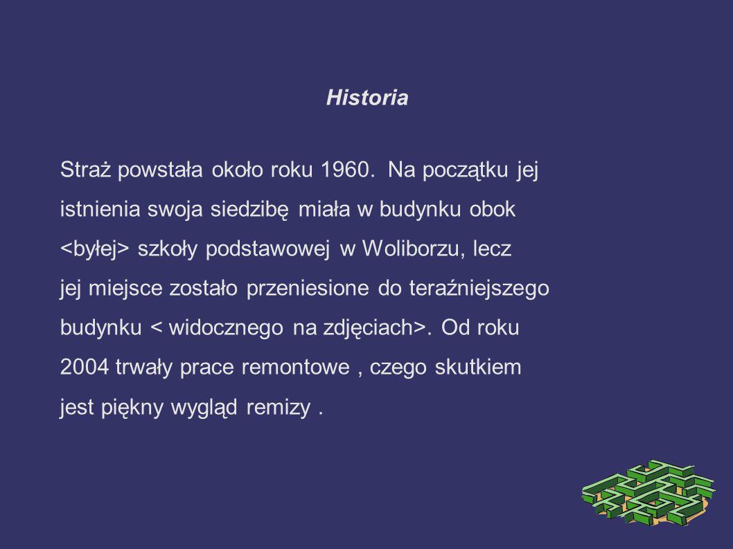 Historia Straż powstała około roku 1960. Na początku jej istnienia swoja siedzibę miała w budynku obok szkoły podstawowej w Woliborzu, lecz jej miejsc