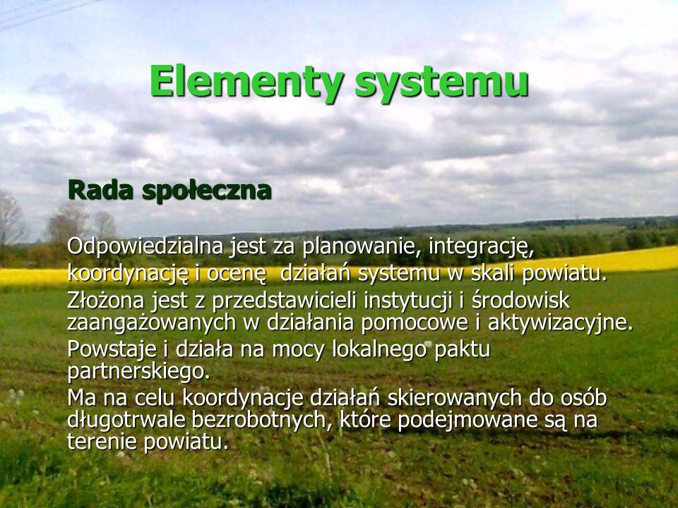 Elementy systemu Rada społeczna Odpowiedzialna jest za planowanie, integrację, koordynację i ocenę działań systemu w skali powiatu. Złożona jest z prz