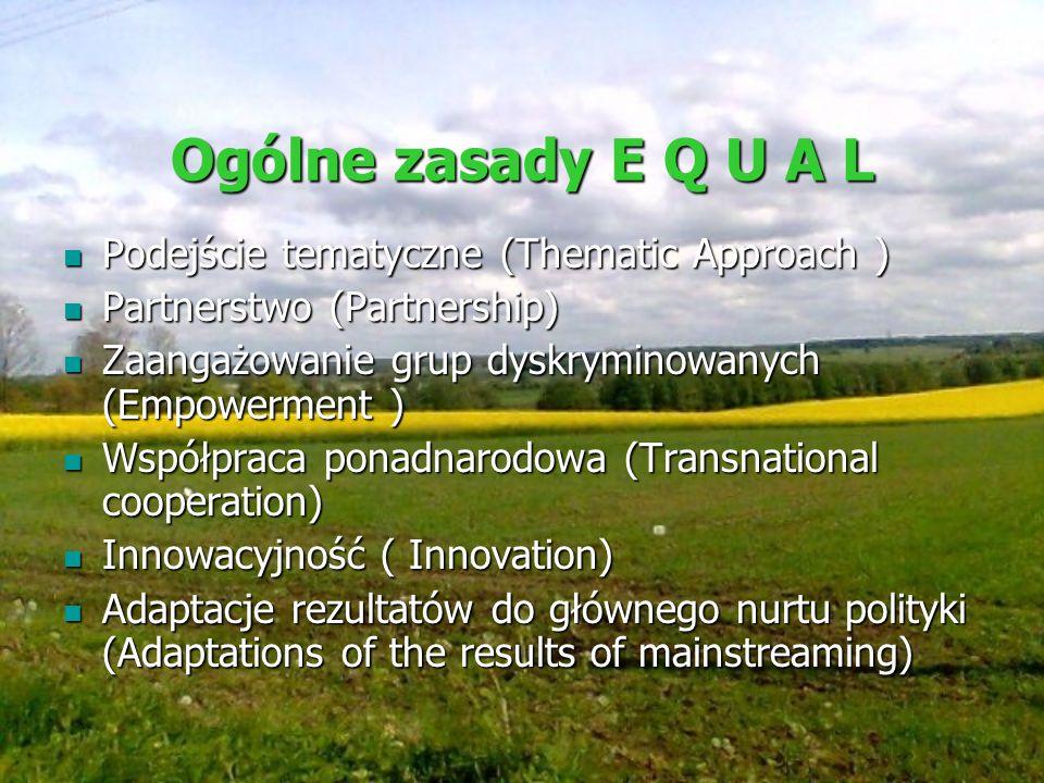Ogólne zasady E Q U A L Podejście tematyczne (Thematic Approach ) Podejście tematyczne (Thematic Approach ) Partnerstwo (Partnership) Partnerstwo (Par
