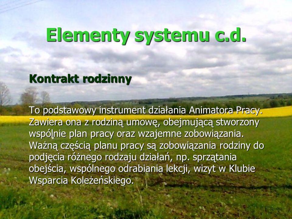 Elementy systemu c.d. Kontrakt rodzinny To podstawowy instrument działania Animatora Pracy. Zawiera ona z rodziną umowę, obejmującą stworzony wspólnie