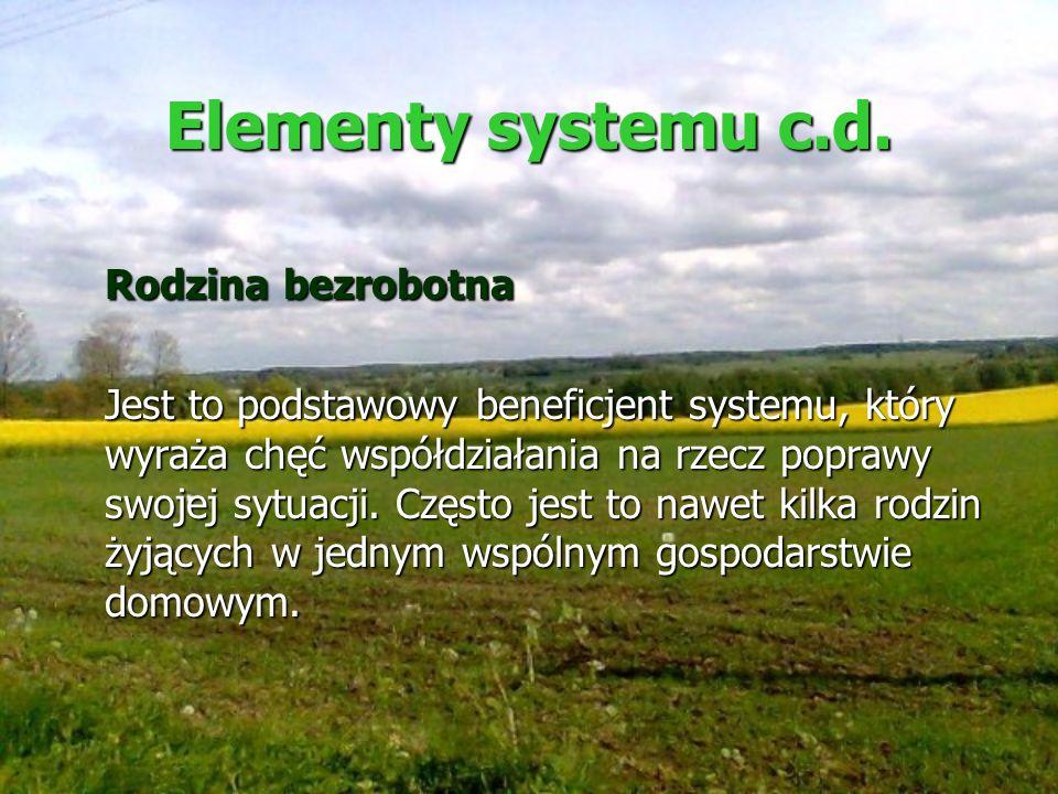 Elementy systemu c.d. Rodzina bezrobotna Jest to podstawowy beneficjent systemu, który wyraża chęć współdziałania na rzecz poprawy swojej sytuacji. Cz