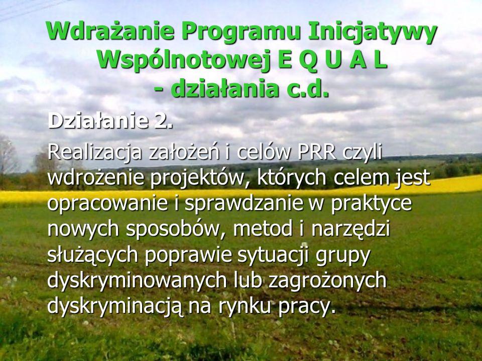 Wdrażanie Programu Inicjatywy Wspólnotowej E Q U A L - działania c.d. Działanie 2. Realizacja założeń i celów PRR czyli wdrożenie projektów, których c