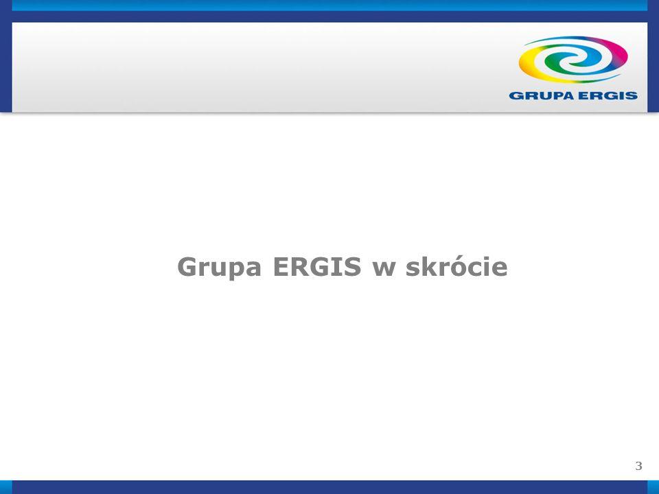 3 Grupa ERGIS w skrócie