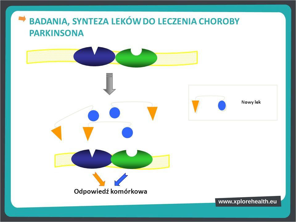Odpowiedź komórkowa Nowy lek BADANIA, SYNTEZA LEKÓW DO LECZENIA CHOROBY PARKINSONA
