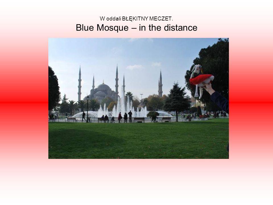 W oddali BŁĘKITNY MECZET. Blue Mosque – in the distance