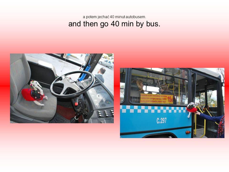 a potem jechać 40 minut autobusem. and then go 40 min by bus.